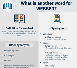 webbed, synonym webbed, another word for webbed, words like webbed, thesaurus webbed