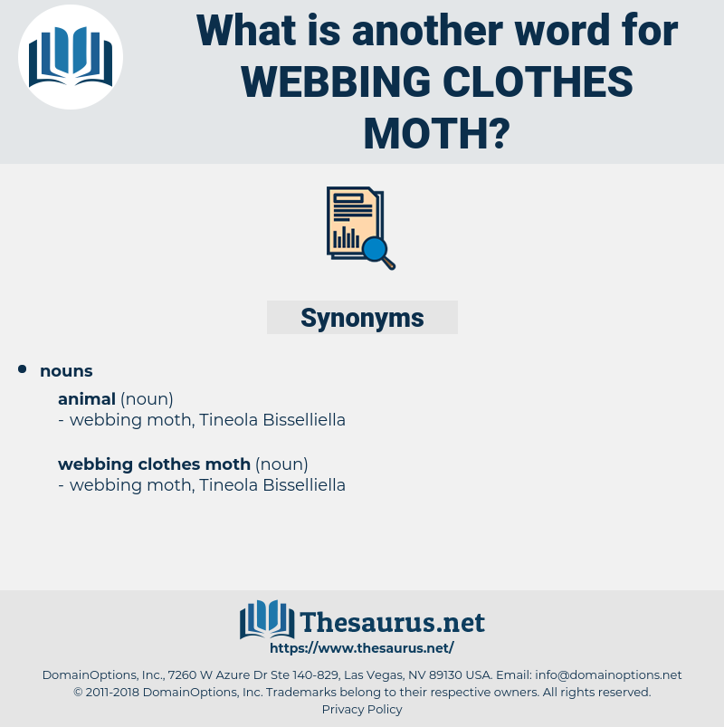 webbing clothes moth, synonym webbing clothes moth, another word for webbing clothes moth, words like webbing clothes moth, thesaurus webbing clothes moth
