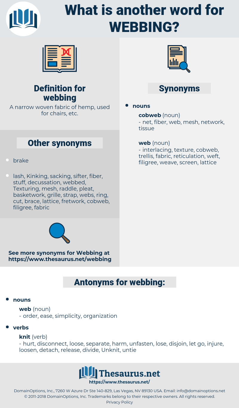webbing, synonym webbing, another word for webbing, words like webbing, thesaurus webbing