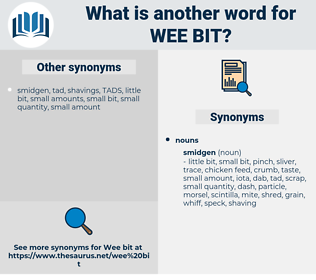 wee bit, synonym wee bit, another word for wee bit, words like wee bit, thesaurus wee bit