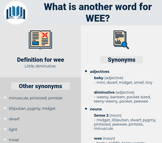 wee, synonym wee, another word for wee, words like wee, thesaurus wee
