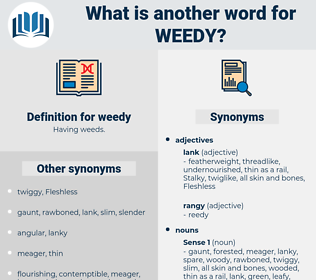 weedy, synonym weedy, another word for weedy, words like weedy, thesaurus weedy