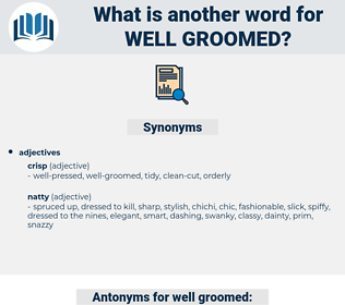 well-groomed, synonym well-groomed, another word for well-groomed, words like well-groomed, thesaurus well-groomed