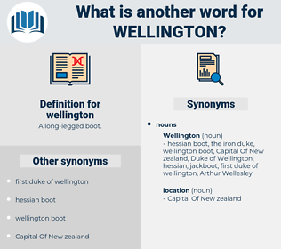 wellington, synonym wellington, another word for wellington, words like wellington, thesaurus wellington