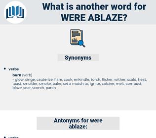 were ablaze, synonym were ablaze, another word for were ablaze, words like were ablaze, thesaurus were ablaze