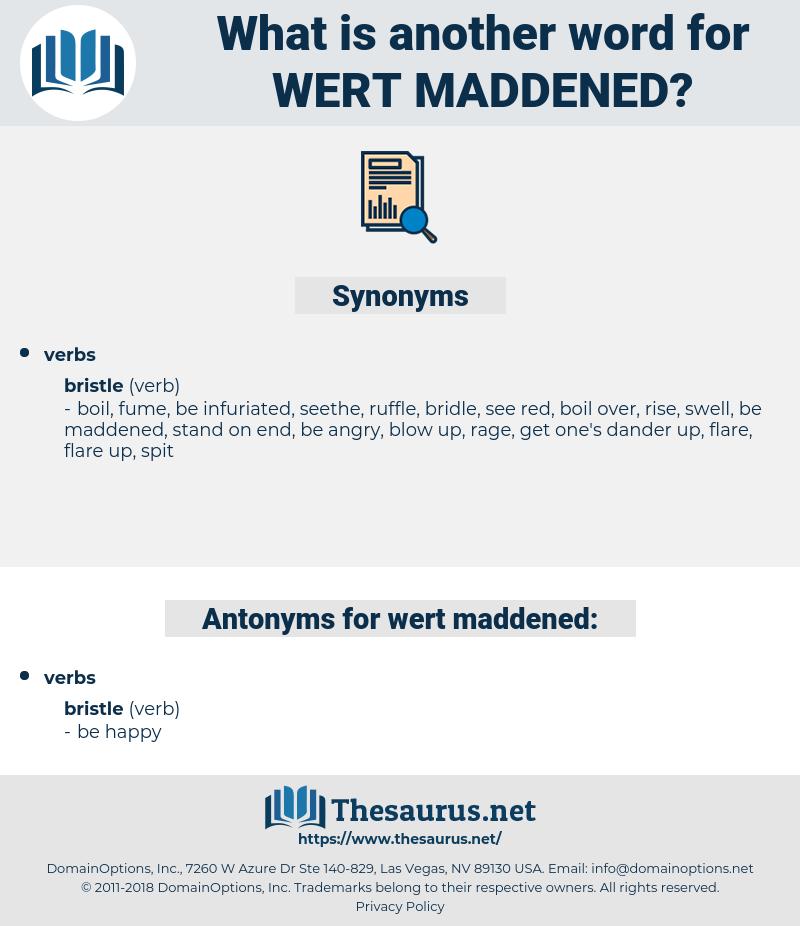wert maddened, synonym wert maddened, another word for wert maddened, words like wert maddened, thesaurus wert maddened