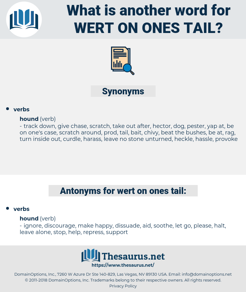 wert on ones tail, synonym wert on ones tail, another word for wert on ones tail, words like wert on ones tail, thesaurus wert on ones tail