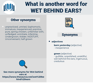 wet behind ears, synonym wet behind ears, another word for wet behind ears, words like wet behind ears, thesaurus wet behind ears