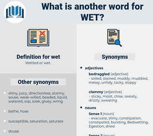 wet, synonym wet, another word for wet, words like wet, thesaurus wet