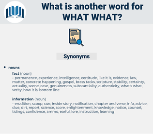 what what, synonym what what, another word for what what, words like what what, thesaurus what what