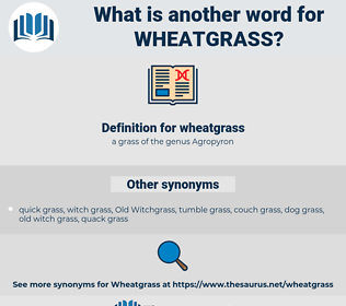 wheatgrass, synonym wheatgrass, another word for wheatgrass, words like wheatgrass, thesaurus wheatgrass