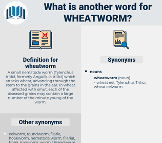 wheatworm, synonym wheatworm, another word for wheatworm, words like wheatworm, thesaurus wheatworm