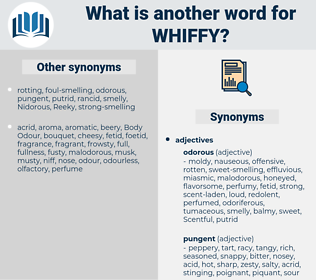 whiffy, synonym whiffy, another word for whiffy, words like whiffy, thesaurus whiffy