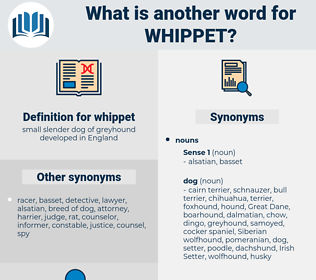 whippet, synonym whippet, another word for whippet, words like whippet, thesaurus whippet