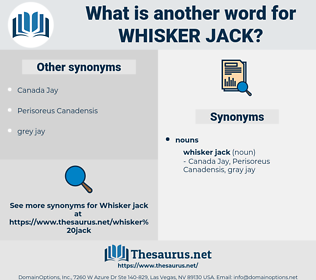 whisker jack, synonym whisker jack, another word for whisker jack, words like whisker jack, thesaurus whisker jack