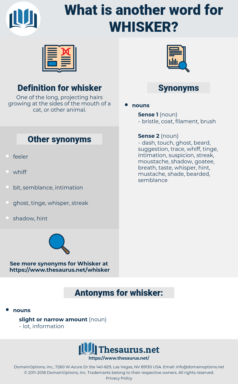 whisker, synonym whisker, another word for whisker, words like whisker, thesaurus whisker