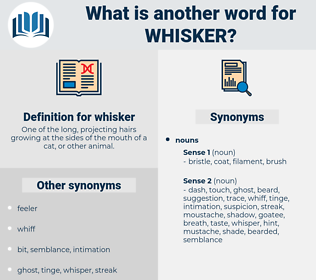 whisker, synonym whisker, another word for whisker, words like whisker, thesaurus whisker