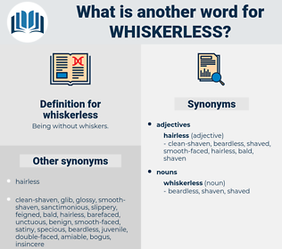 whiskerless, synonym whiskerless, another word for whiskerless, words like whiskerless, thesaurus whiskerless