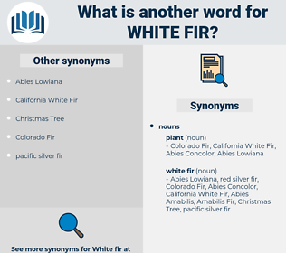 white fir, synonym white fir, another word for white fir, words like white fir, thesaurus white fir