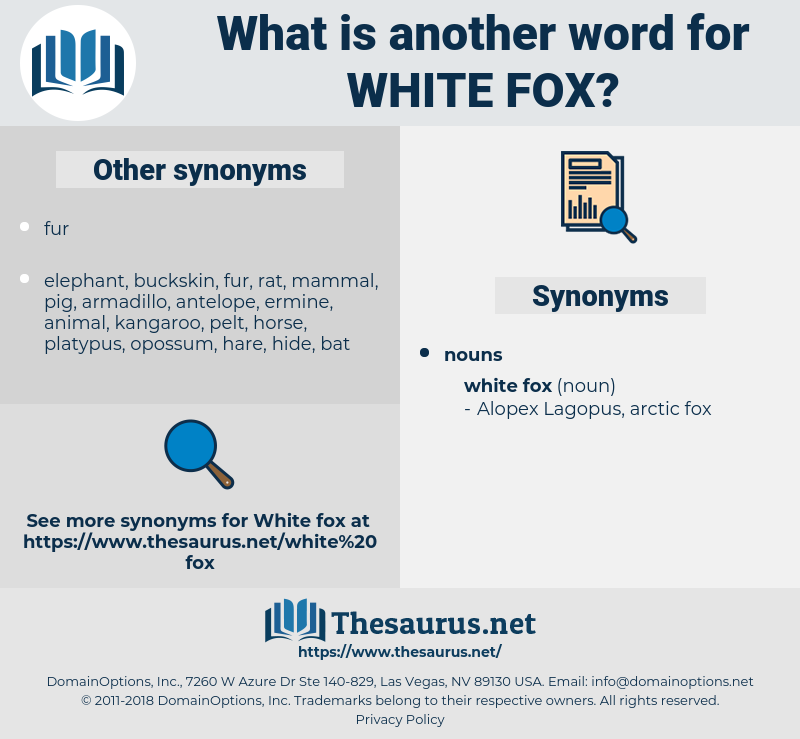 white fox, synonym white fox, another word for white fox, words like white fox, thesaurus white fox