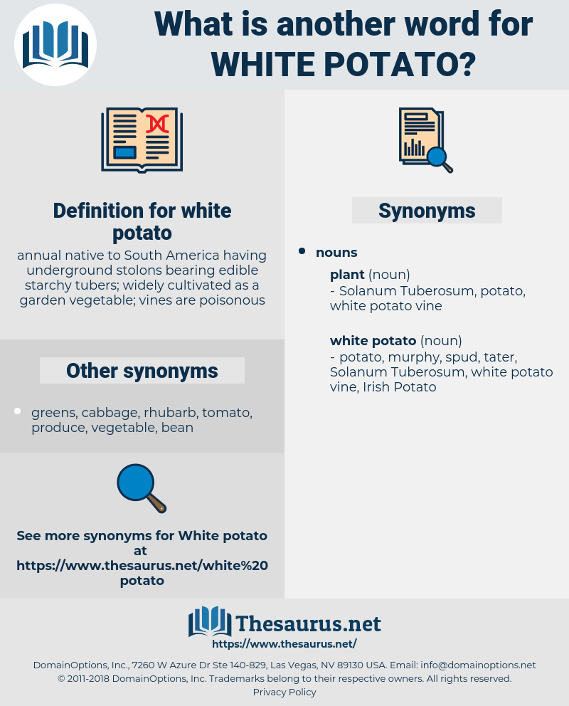 white potato, synonym white potato, another word for white potato, words like white potato, thesaurus white potato