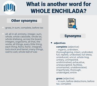 whole enchilada, synonym whole enchilada, another word for whole enchilada, words like whole enchilada, thesaurus whole enchilada