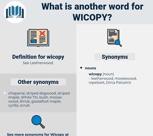 wicopy, synonym wicopy, another word for wicopy, words like wicopy, thesaurus wicopy