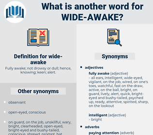 wide-awake, synonym wide-awake, another word for wide-awake, words like wide-awake, thesaurus wide-awake