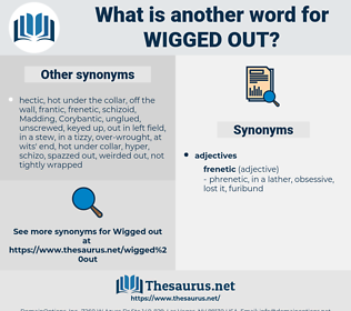wigged out, synonym wigged out, another word for wigged out, words like wigged out, thesaurus wigged out