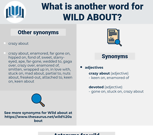wild about, synonym wild about, another word for wild about, words like wild about, thesaurus wild about