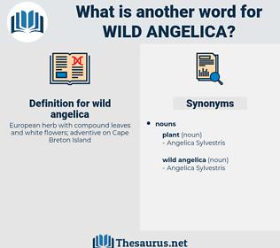 wild angelica, synonym wild angelica, another word for wild angelica, words like wild angelica, thesaurus wild angelica
