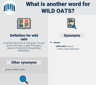 wild oats, synonym wild oats, another word for wild oats, words like wild oats, thesaurus wild oats