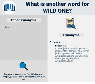 wild one, synonym wild one, another word for wild one, words like wild one, thesaurus wild one