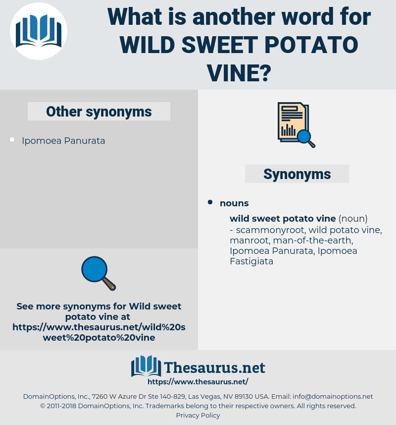 wild sweet potato vine, synonym wild sweet potato vine, another word for wild sweet potato vine, words like wild sweet potato vine, thesaurus wild sweet potato vine