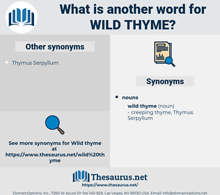 wild thyme, synonym wild thyme, another word for wild thyme, words like wild thyme, thesaurus wild thyme