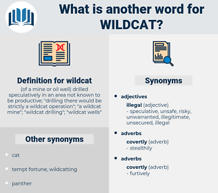 wildcat, synonym wildcat, another word for wildcat, words like wildcat, thesaurus wildcat