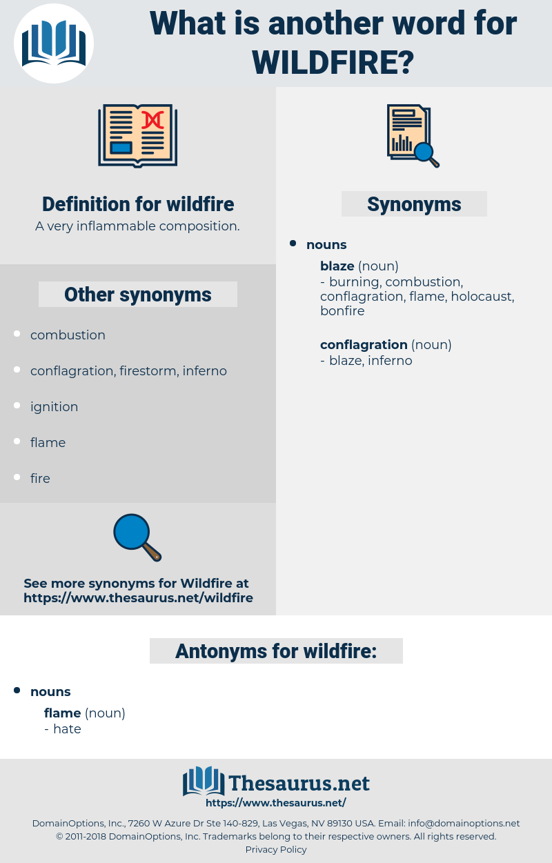 wildfire, synonym wildfire, another word for wildfire, words like wildfire, thesaurus wildfire
