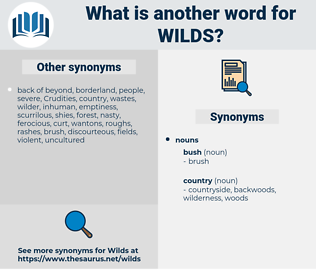 wilds, synonym wilds, another word for wilds, words like wilds, thesaurus wilds