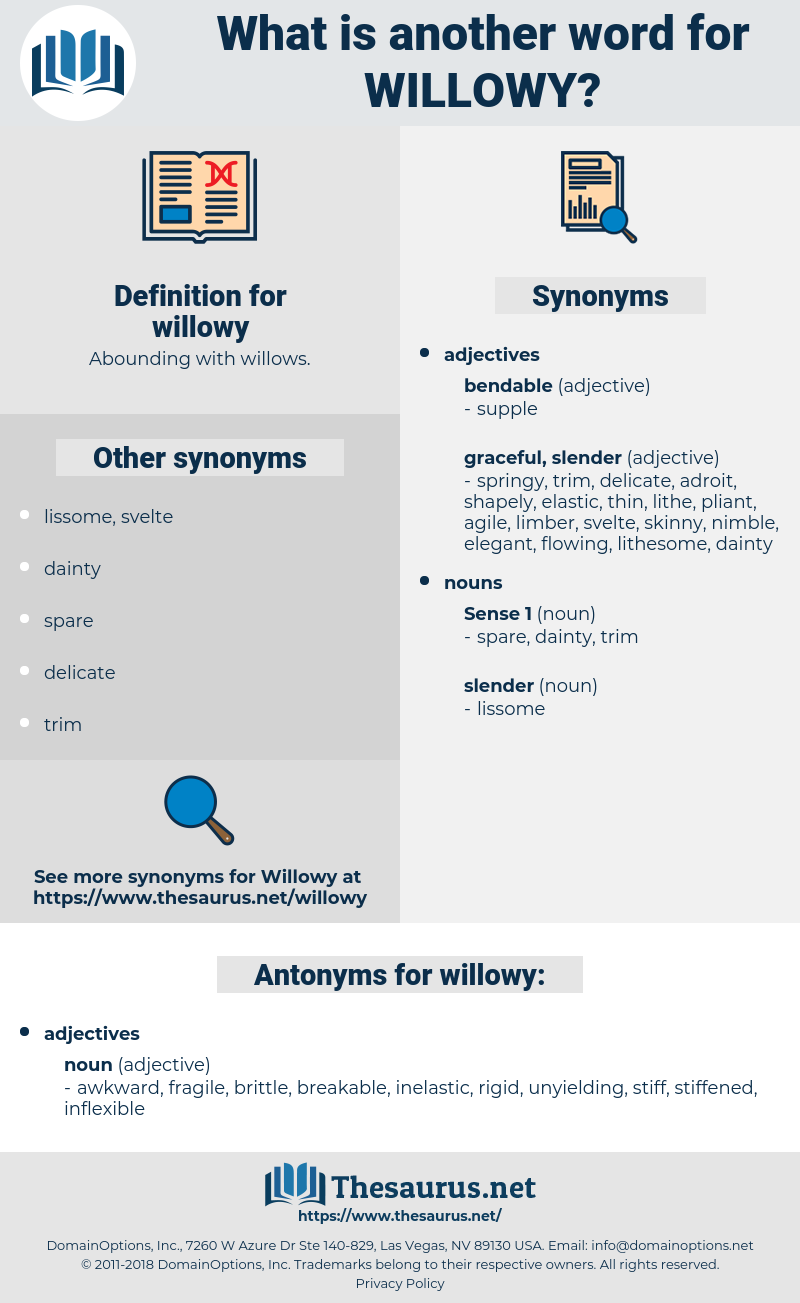 willowy, synonym willowy, another word for willowy, words like willowy, thesaurus willowy
