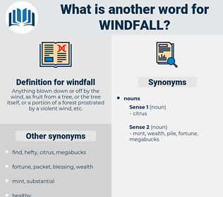 windfall, synonym windfall, another word for windfall, words like windfall, thesaurus windfall