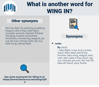wing in, synonym wing in, another word for wing in, words like wing in, thesaurus wing in