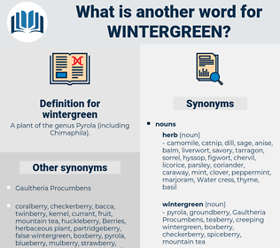 wintergreen, synonym wintergreen, another word for wintergreen, words like wintergreen, thesaurus wintergreen