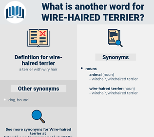 wire-haired terrier, synonym wire-haired terrier, another word for wire-haired terrier, words like wire-haired terrier, thesaurus wire-haired terrier