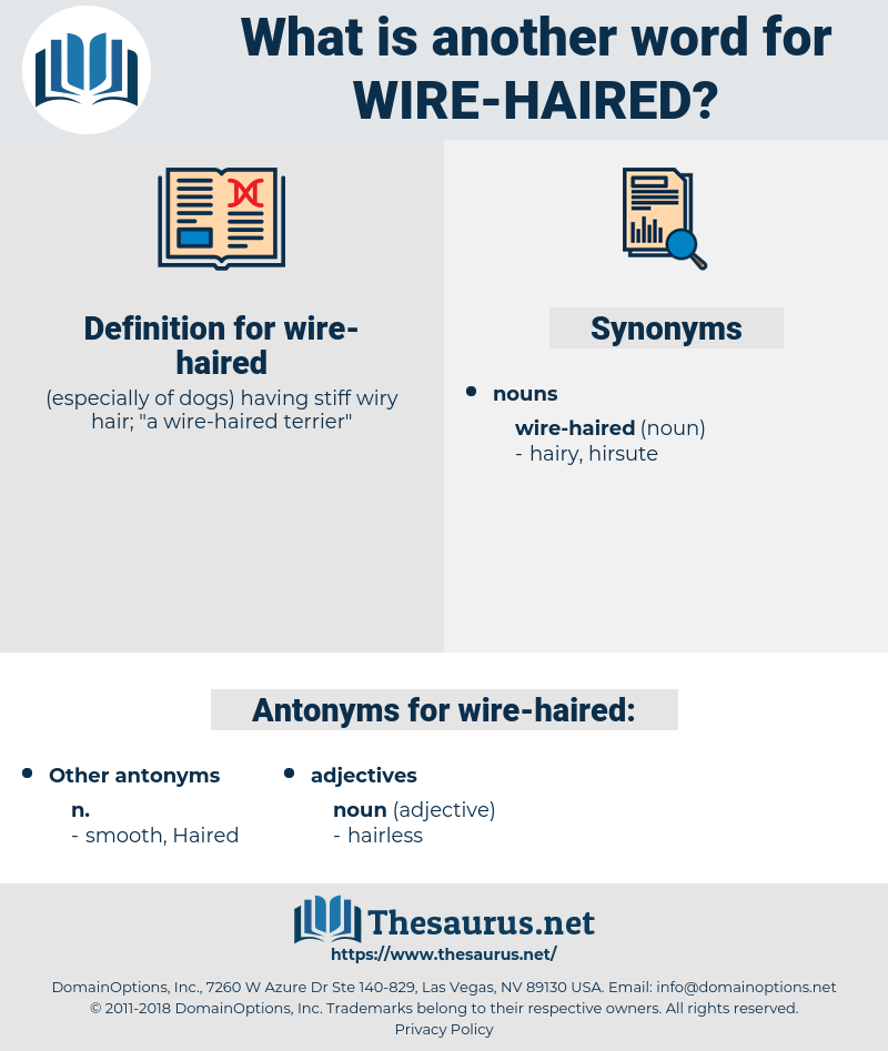 wire-haired, synonym wire-haired, another word for wire-haired, words like wire-haired, thesaurus wire-haired