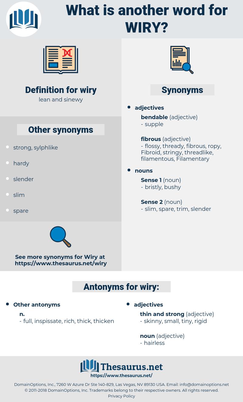 wiry, synonym wiry, another word for wiry, words like wiry, thesaurus wiry