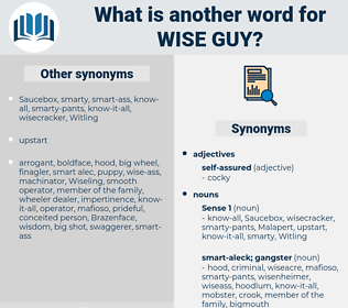 wise guy, synonym wise guy, another word for wise guy, words like wise guy, thesaurus wise guy