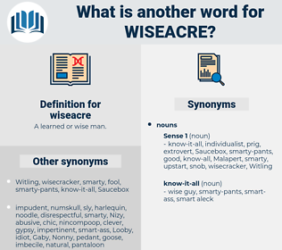 wiseacre, synonym wiseacre, another word for wiseacre, words like wiseacre, thesaurus wiseacre