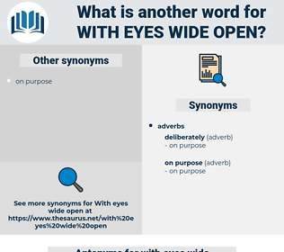 with eyes wide open, synonym with eyes wide open, another word for with eyes wide open, words like with eyes wide open, thesaurus with eyes wide open