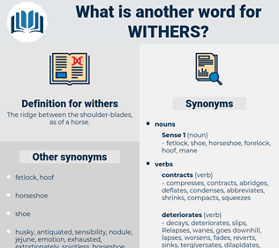 withers, synonym withers, another word for withers, words like withers, thesaurus withers
