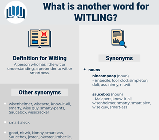 Witling, synonym Witling, another word for Witling, words like Witling, thesaurus Witling